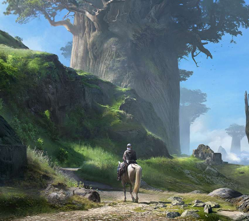 Giant Trees wallpaper or background