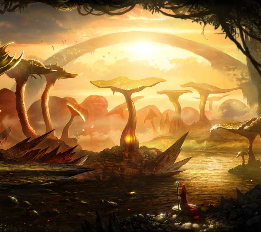 Mushroom swamp wallpaper or background
