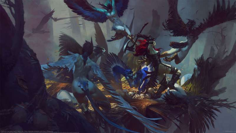Fighting in the harpy nest  wallpaper or background