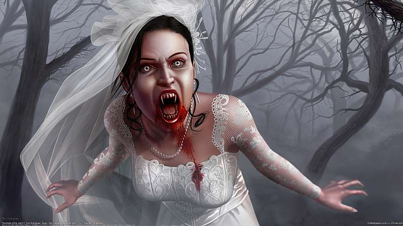 The bride of the night wallpaper or background